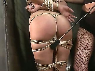 BDSM, Big Tits, Blindfold, Bondage, Bound, Breath Play, Cage, Caning, Clamp, Cute,