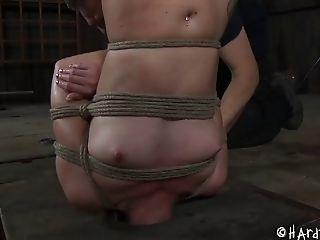 Bdsm, Bondage , Mignonette, Fétiche , Hailey Young, Soumis , Torture,