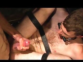 Anal Sex, BDSM, Big Cock, Blowjob, Bondage, Brunette, Brutal, Caucasian, Couple, Cute,