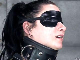BDSM, Bondage, Fetish, Game, Pornstar, Torture,