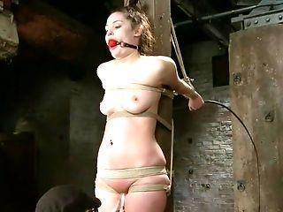 Babe, BDSM, Charlotte Vale,