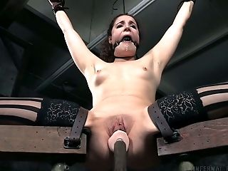 Babe, BDSM, Brunette, Clamp, Cute, Forest, Pain, Stockings,